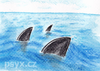 žraločí ploutve